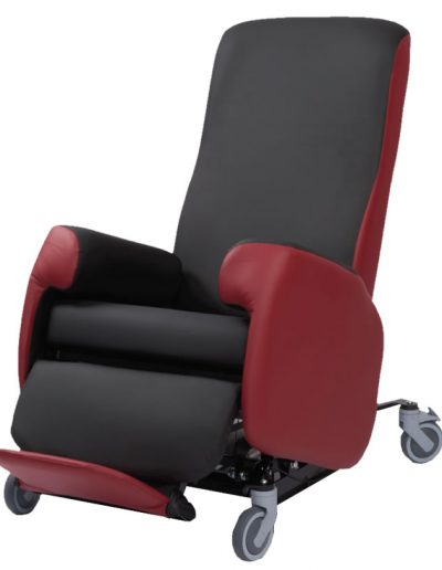 Riser Care Chair